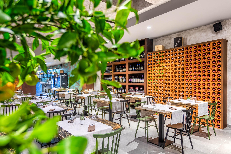 Servizio fotografico ristoranti fotografia con pianta sfocata della bottigliera in mattoni a muro con vini